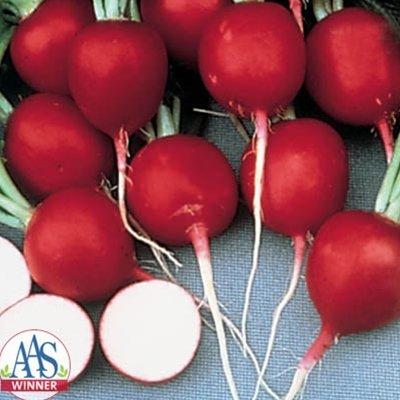 Radish Cherry Belle USDA Certified Organic Vegetable Seed - 1,000 seeds ()