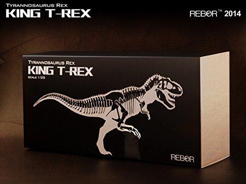 rebor 1/35 T-REX ティラノサウルス Tyrannosaurus by Rebor (Image #2)