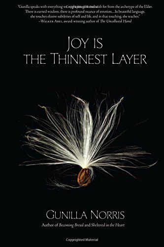 Read Online Joy is the Thinnest Layer PDF