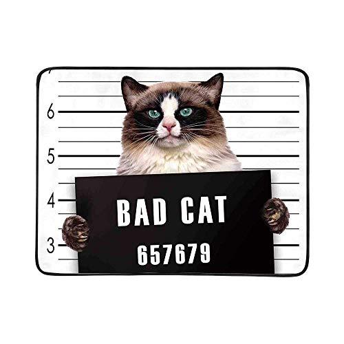 YOLIYANA Cat Lover Decor Utility Beach Mat,Bad Gang Cat in Jail Kitty Under Arrest Criminal Prisoner Hangover Artsy Work for Home,One Size