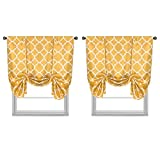H.VERSAILTEX Blackout Curtains Thermal Insulated