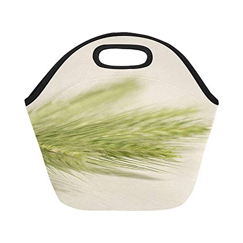 (Insulated Neoprene Lunch Bag Ears Corn Green Decorative White The Large Size Reusable Thermal Thick Lunch Tote Bags For Lunch Boxes For Outdoors,work, Office,)