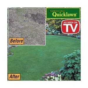 Quicklawn Grass Seed - 3