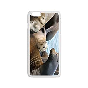 Sea Lion Baby Hight Quality Plastic Case for Iphone 6