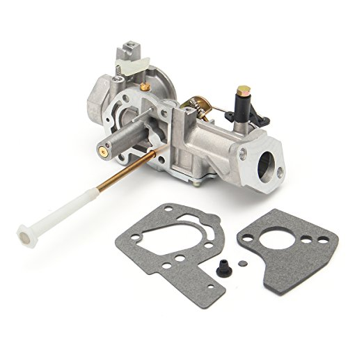 Wchaoen Carburetors Kit For Briggs&Stratton 130202 112202 112232 134202 137202 133212 5Hp Tools and accessories