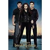(24x36) The Twilight Saga: Breaking Dawn Part 2 - Edward, Bella & Jacob Movie Poster