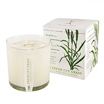 Fresh Cut Grass Soy Candle with Plantable - Grass Cut Fresh