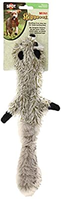 Ethical Mini Skinneeez Raccoon 14-Inch Stuffingless Dog Toy by Ethical Pet Products (Spot)