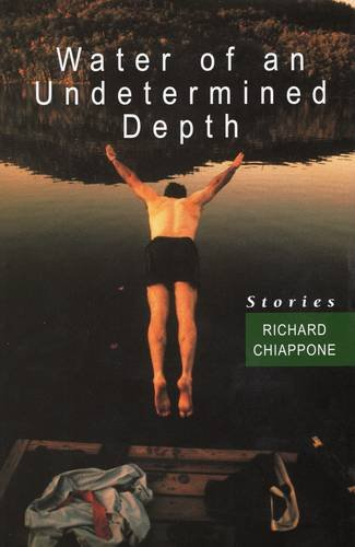 Water of an Undetermined Depth pdf epub