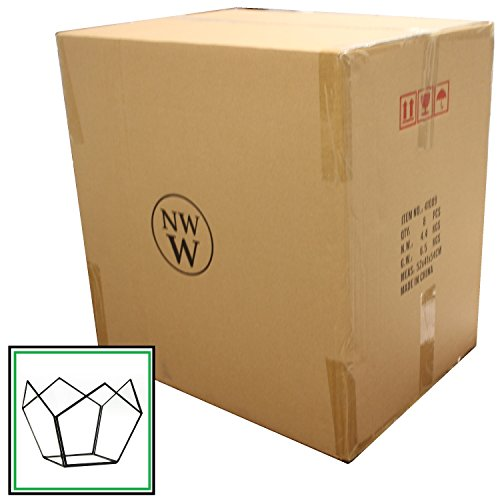 NW Wholesaler - Glass Basket Terrarium - Case of 8 by NW Wholesaler