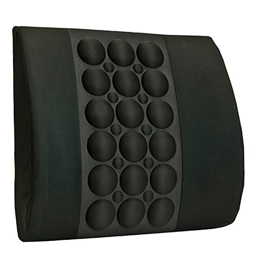 BodyHealt Bodyhealt Back Cushion with Ergopressue Technology & Magnet Therapy for Office, Home & Auto (Cushion Back Imak)