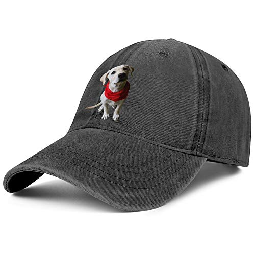 Denim Baseball Cap Labrador Retriever Dog Unisex Vintage Adjustable Cotton Dad Hat ()