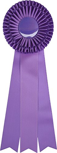 Awards Purple Ribbon - Giant Premium Purple Ribbon Award Rosette - for Prize, Party, Gift, or Prop - 18 inch - Double Rosette with Triple Streamers (Purple)