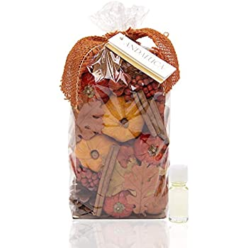 Andaluca Autumn Pumpkin Patch Scented Potpourri | Made in California