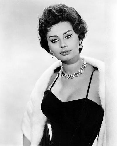 sophia loren 8x10 hd aluminum wall art as cinzia zaccardi in
