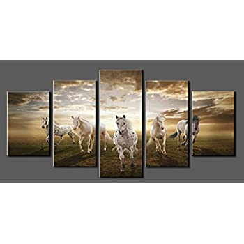 Canvas prints sk002 modern canvas wall art white horse stretched and framed ready to