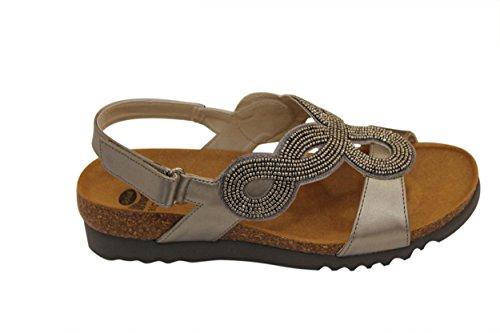Scholl–Loy–Sandale–Zinn