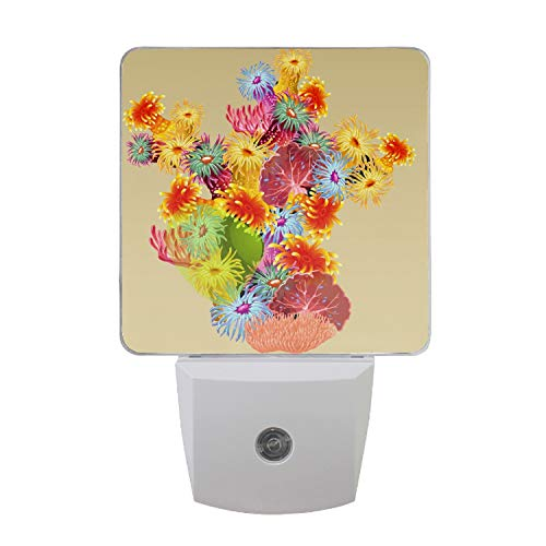 Night Light Colourful Bush Corals and Polyps with Senor Dusk to Dawn Night Light for Kids Baby Girls Boys Adults (Star Coral Polyp)