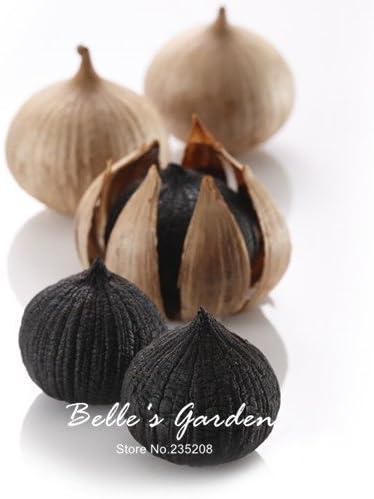 100pcs Negro ajo semillas sanas delicioso picante de especias ...