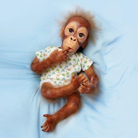 (Lifelike Baby Orangutan Doll: Baby Pongo by Ashton Drake)