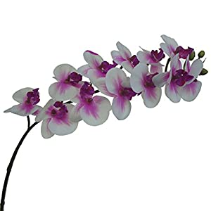 Lily Garden Mini Real Touch Latex Artificial Phalaenopsis Orchids Flower (10, Purple Center) 3
