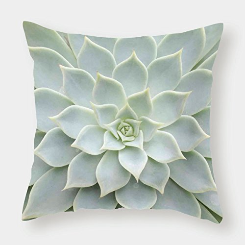 iPrint Microfiber Throw Pillow Cushion Cover,Cactus Decor,Cactus Plant Flower Zoomed Photo Image Desert Mexican Hot Natural Plant Artwork,Green,Decorative Square Accent Pillow Case by iPrint