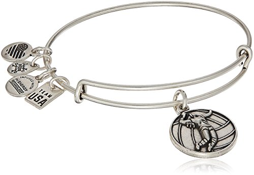 Alex and Ani Womens USOC Volleyball Bangle Bracelet, Rafaelian Silver, Expandable by Alex and Ani