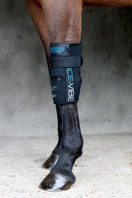 Horseware Ice Vibe für das Vorderfußwurzelgelenk / Knee Wrap