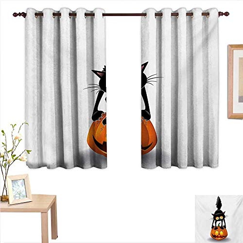 Halloween Decor Curtains by Black Cat on Pumpkin Drawing Spooky Cartoon Characters Halloween Humor Art 55