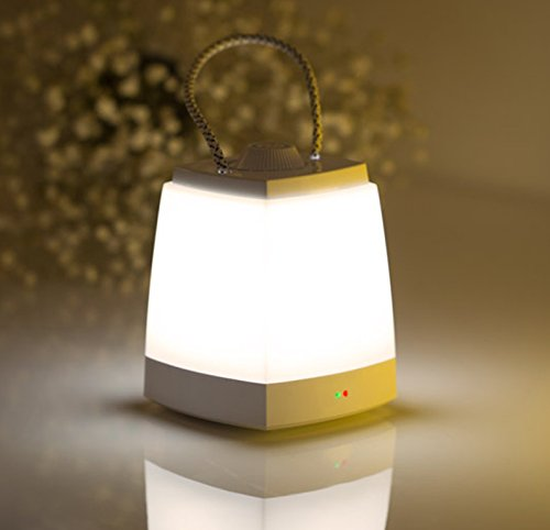 Dimmable USB Travel LED Bedside Hanging Lamp Night Light For Adults Kid Decoration White Light by Zhi Jin