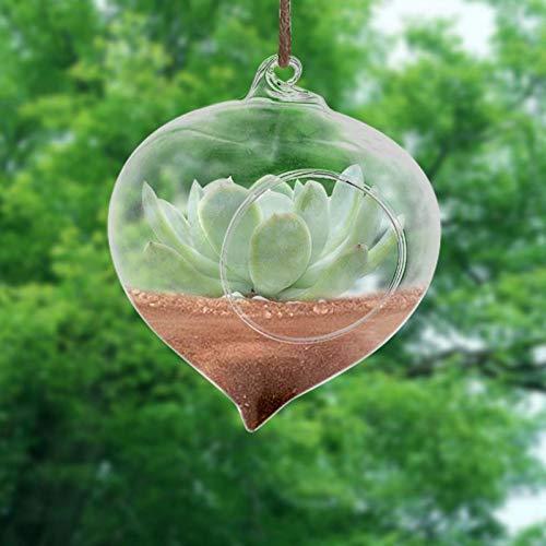 Laboratory Plastic - Terrarium Ball Globe Shape Clear Hanging Glass Vase Flower Plants Container Ornament Micro Landscape - Filter World Replacement Women Silver Pencil Globe Mold Sesame