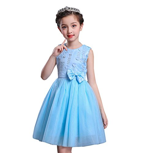 little dragon pig 6 Year Old Dresses Bule Kids Girl Sleeveless Lace Flower Tutu Princess Party Dress (6-7Years) ()