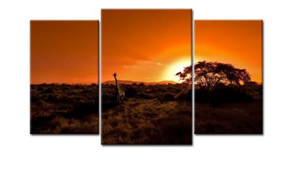 Imagen TOP XXL de África sobre lienzo imágenes 3 piezas Art-Nr ...