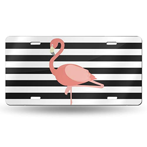 NLXZD Flamingo Printable Novelty License Plate American Vehicle License Plate ()