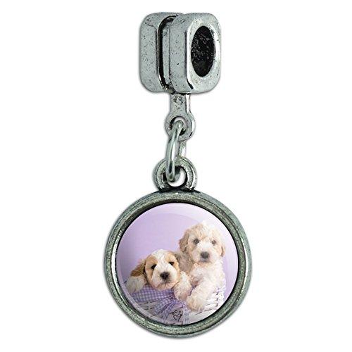 GRAPHICS & MORE Spoodle Cockapoo Puppies Dogs Wicker Basket Italian European Style Bracelet Charm Bead