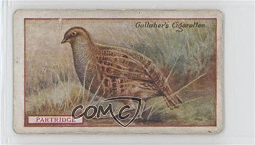 Partridge Ungraded COMC Good to VG-EX (Trading Card) 1921 Gallaher Animals & Birds of Commercial Value - Tobacco [Base] #17 from Gallaher Animals & Birds of Commercial Value