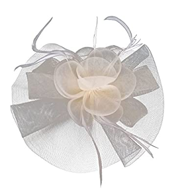 Fascinator Hair Clip Headband Feather Flower Pillbox Hat Cocktail Tea Party