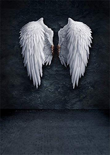AOFOTO 5x7ft Angel Wings Backdrop Grunge Wall Photography Background Fashion Youngster Kid Girl Boy Adult Artistic Portrait Photo Shoot Studio Props Video Drop Wallpaper ()