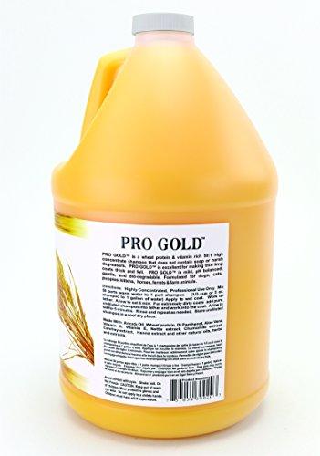 Pictures of Kelco Pro Gold Shampoo Gallon KE300200 6