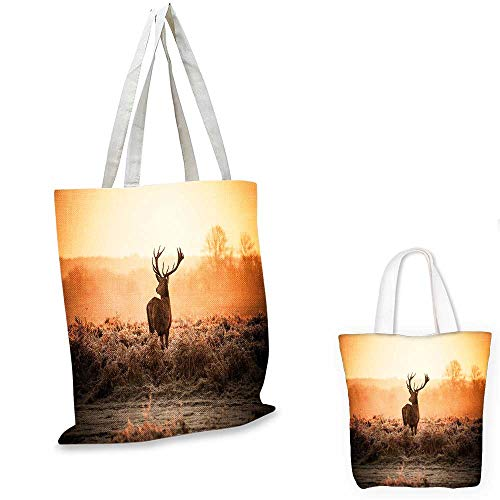 Hunting Decor small clear shopping bag Red Deer in the Morning Sun Wild Nature Scenery Countryside Rural Heathers shopping bag for women Brown Orange. 14