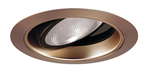 Juno Lighting Group 689WHZ-ABZ Gimbal Ring in Cone Adjustable Trim with Wheat Haze and Classic Aged Bronze Trim, ()