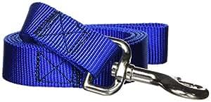 Guardian Gear Basic Nylon Dog Leash, 4-Feet x 1-Inch Lead, Blue