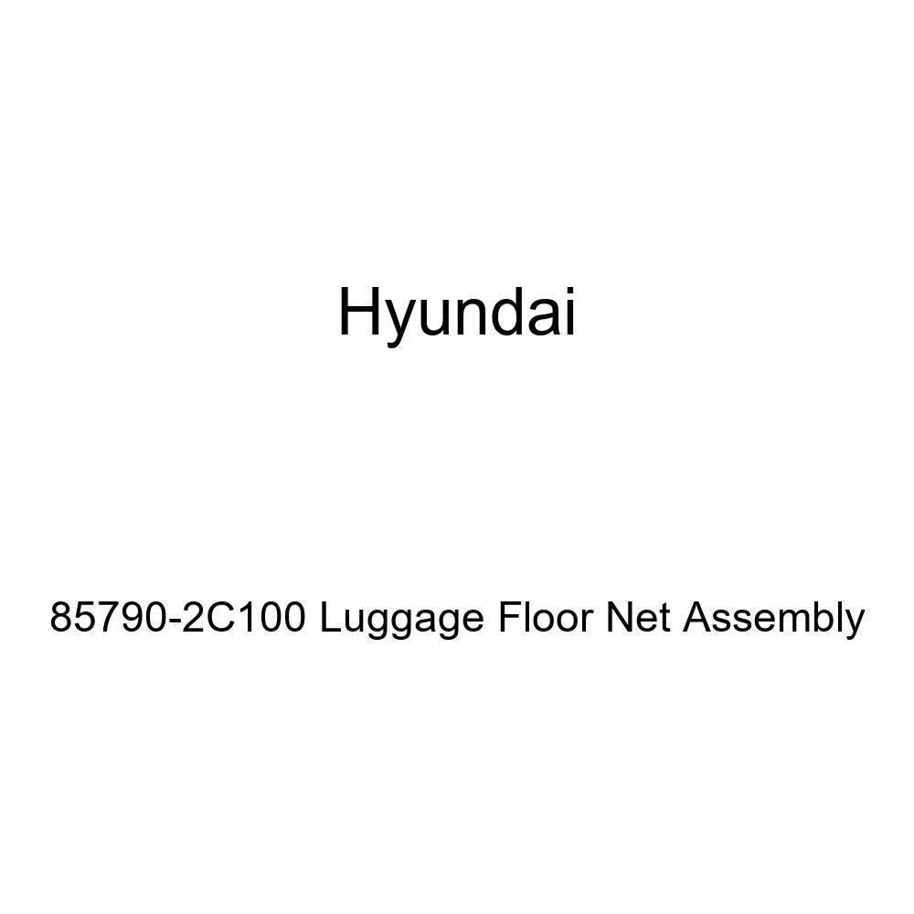Genuine Hyundai 85790-2C100 Luggage Floor Net Assembly