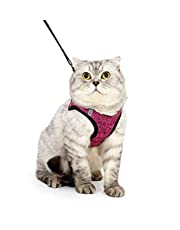 Fooubaby Soft Cushion Cat Harness with Leash for Walking Training Outdoor Escape Proof Padded Cat Vest Adjustable and Comfort for Small Medium Large Cats Pet Kitten Puppy