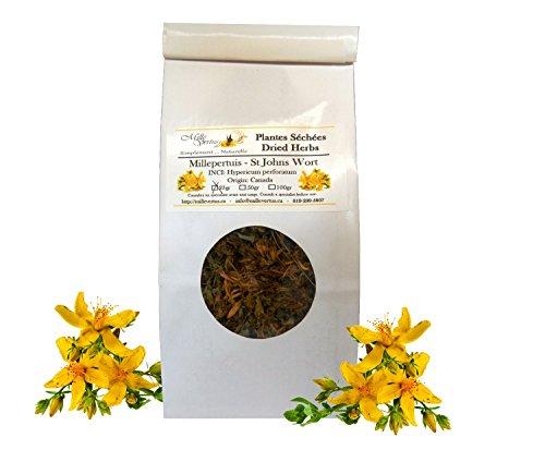 st-johns-wort-hypericum-perforatum-dried-flowers-and-herbs-25g