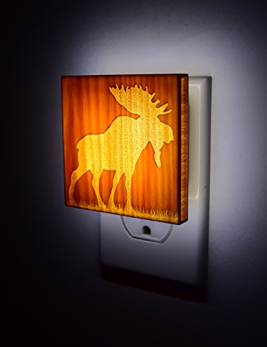 National Park Moose Night Light