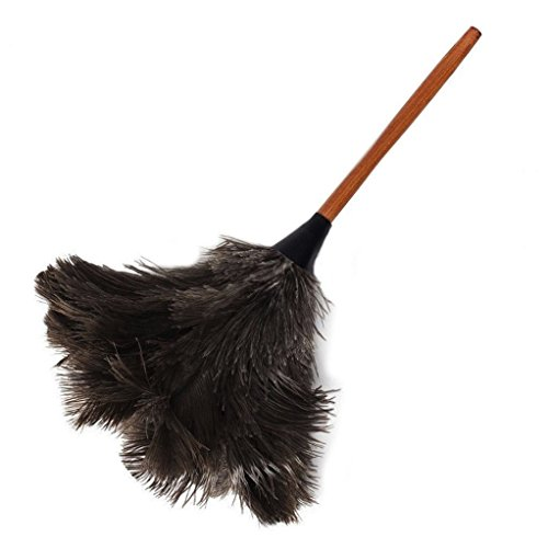 AAYU Premium Professional Feather Duster | Natural Handheld Duster for Cleaning and Feather Moping | Genuine Ostrich Feather Duster with Long Wooden Handle | Eco-Friendly | Reusable (50 cm)