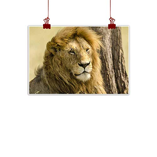 duommhome Wall Art Decor Poster Painting Male Lion with Numerous Scars on its Face Modern Minimalist Atmosphere 35