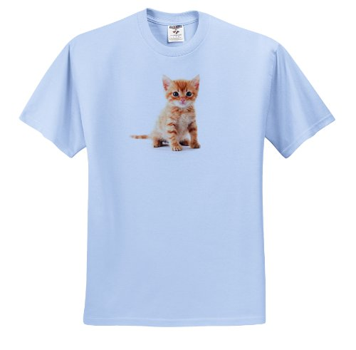 Used, Florene Cat - Cute Orange Tabby Kitten - T-Shirts - for sale  Delivered anywhere in USA