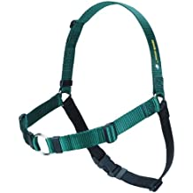 SENSE-ation No-Pull Dog Harness - Large/Wide Green with Black